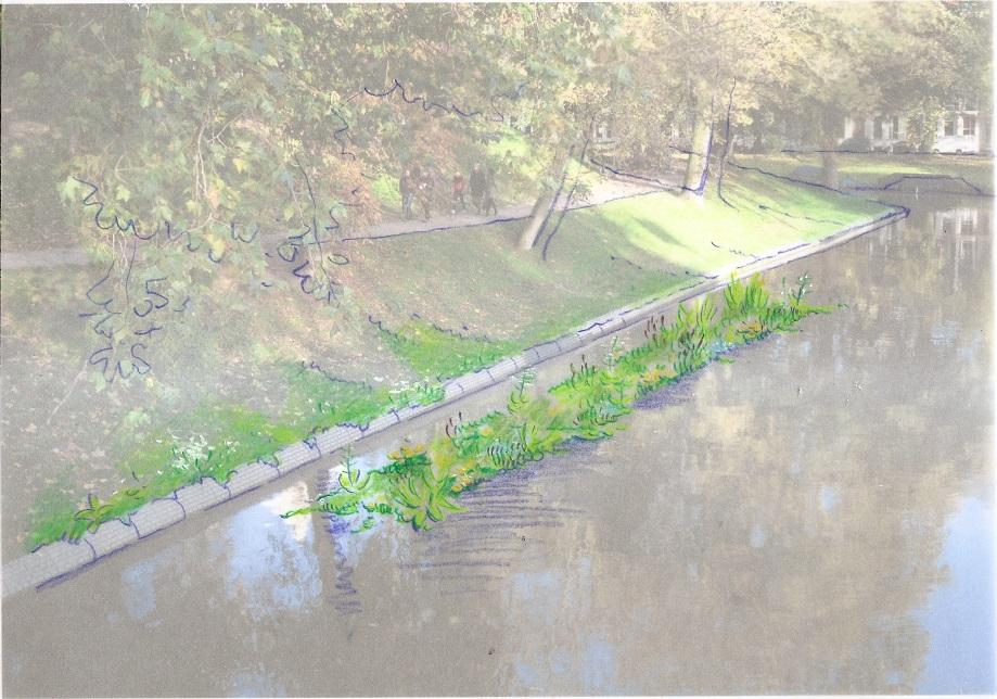 A Tolsteegbrug, sfeerbeeld drijvend eiland met moerasplanten