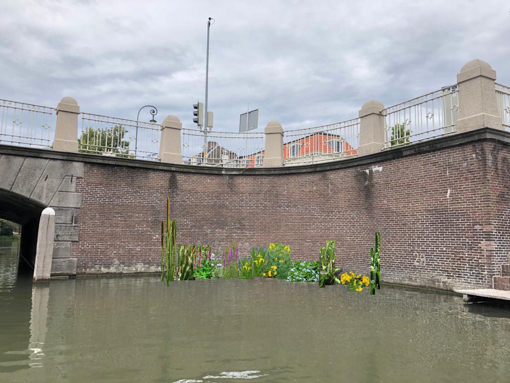 sfeerbeeld onderwaterstructuren met beplanting bruggenhoofd Wittevrouwenbrug