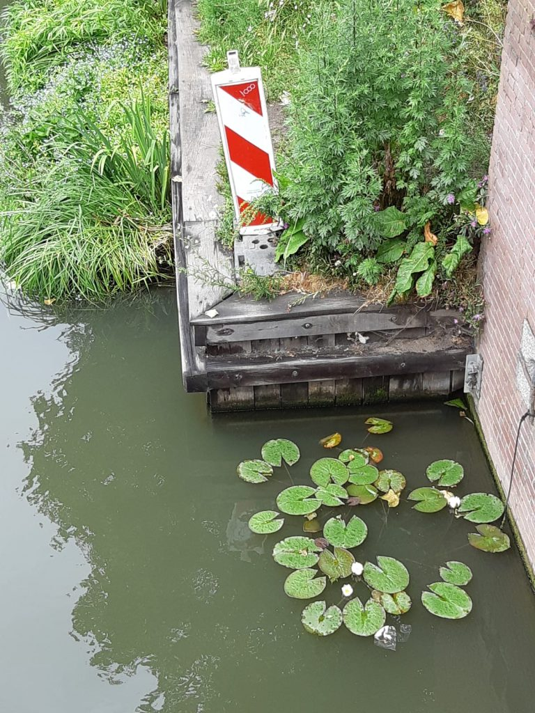 luwe hoek Van Asch van Wijckbrug